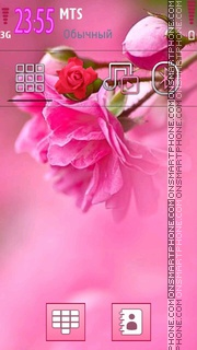 Pink Roses 03 theme screenshot