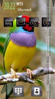 Bird 04 tema screenshot