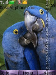 Parrot 06 theme screenshot