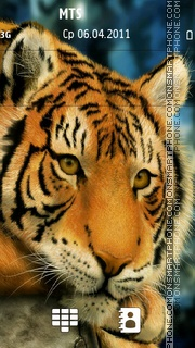 Silent Beast N8 tema screenshot