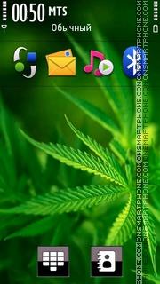Скриншот темы Mary Jane