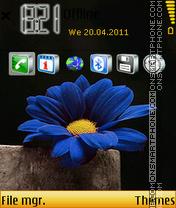 Blue Flower 07 es el tema de pantalla