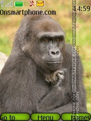 Скриншот темы Monkey Gorilla