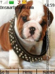 Cute puppy 05 tema screenshot