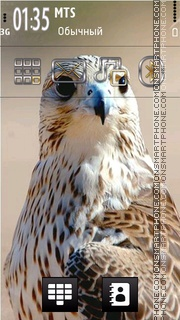 Falcon 01 tema screenshot