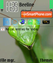 My Beauty theme screenshot
