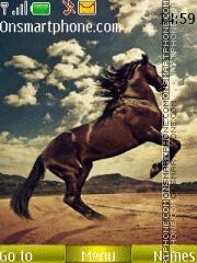 Horse 3d theme screenshot