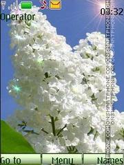 Скриншот темы White lilac anim