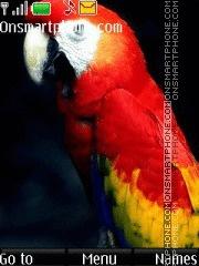Parrot Colors es el tema de pantalla