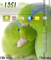 Скриншот темы Love Birds 08