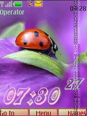 Скриншот темы Ladybird_swf