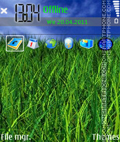 Grass 02 theme screenshot