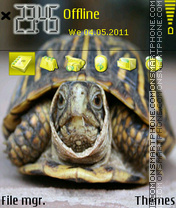 Turtle 02 theme screenshot