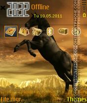 Horse 08 theme screenshot