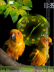Birds Clock 03 theme screenshot