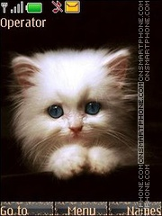 White kitten anim theme screenshot