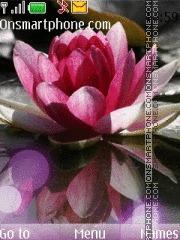 Lotus by RIMA39 theme screenshot