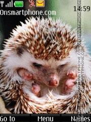Hedgehog 04 theme screenshot