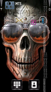 Скриншот темы Skull 2013