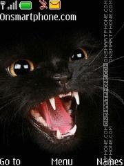 Angry Black Cat theme screenshot