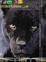 Panther 02 theme screenshot