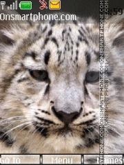 Snow leopard 01 theme screenshot