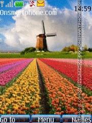 Flower Fields and Windmill es el tema de pantalla