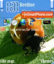 Holycow theme screenshot
